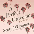 A Perfect Universe: Ten Stories Cover Image