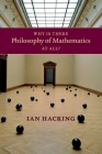 Why Is There Philosophy of Mathematics at All? Cover Image