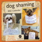Dog Shaming 2021 Wall Calendar Cover Image