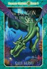 The Dragon in the Sea Cover Image