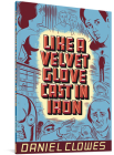 Like a Velvet Glove Cast in Iron Cover Image