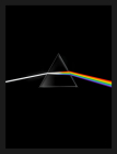 Pink Floyd: Their Mortal Remains Cover Image