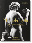 Michelangelo. the Complete Paintings, Sculptures and Arch. Cover Image