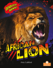 African Lion Cover Image