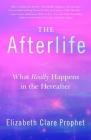 The Afterlife: What Really Happens in the Hereafter Cover Image
