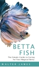 Betta Fish Cover Image