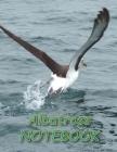 Albatross NOTEBOOK: Bird Notebooks and Journals 110 pages (8.5