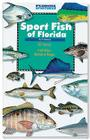 Sport Fish of Florida Cover Image