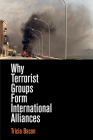 Why Terrorist Groups Form International Alliances Cover Image
