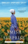 An Amish Surprise (Berlin Bookmobile Series, The  #2) Cover Image