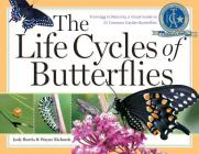 The Life Cycles of Butterflies: From Egg to Maturity, a Visual Guide to 23 Common Garden Butterflies Cover Image