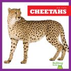 Cheetahs (Big Cats) Cover Image