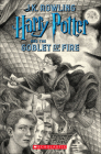 Harry Potter and the Goblet of Fire (Brian Selznick Cover Edition) Cover Image