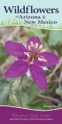 Wildflowers of Arizona & New Mexico: Your Way to Easily Identify Wildflowers (Adventure Quick Guides) Cover Image
