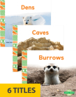Animal Homes (Set of 6) Cover Image
