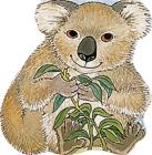 Pocket Koala Cover Image