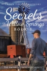Secrets of Willow Springs - Book 3 Cover Image