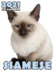 Siamese Cat 2021 Calendar Cover Image