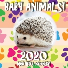 Baby Animals! 2020 Mini Wall Calendar Cover Image