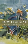 How It Shone Cover Image
