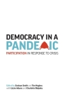 Democracy in a Pandemic: Participation in Response to Crisis Cover Image