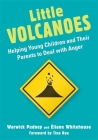 Little Volcanoes: Helping Young Children and Their Parents to Deal with Anger Cover Image