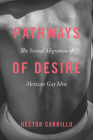 Pathways of Desire: The Sexual Migration of Mexican Gay Men Cover Image