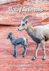 Our Arizona: Baby Animals Cover Image