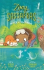 Merhorses and Bubbles (Zoey and Sassafras #3) Cover Image