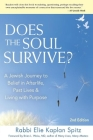 Does the Soul Survive? (2nd Edition): A Jewish Journey to Belief in Afterlife, Past Lives & Living with Purpose Cover Image