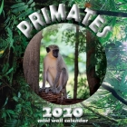 Primates 2020 Mini Wall Calendar Cover Image