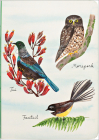 Birder's Amazing A5 Notebook with Dot Grid Pages and Lay Flat Technology Cover Image