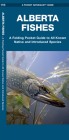 Alberta Fishes: A Folding Pocket Guide to All Known Native and Introduced Species Cover Image