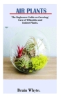 Air Plant: The Beginners Guide on Growing/ Care of Tillandsia and indoors Plant Cover Image