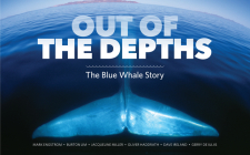 Out of the Depths: The Blue Whale Story Cover Image