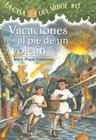 Vacaciones al Pie de un Volcan (Casa del Arbol #13) Cover Image