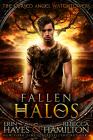 Fallen Halos: A Dystopian Paranormal Romance Novel Cover Image