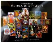 Dorr Bothwell: Straws in the Wind Cover Image