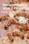 The Mysterious World Of Ants Guide To The Ant Colony: Ant Facts Book For Kids Cover Image
