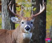 White-Tailed Deer (Woodland Wildlife) Cover Image