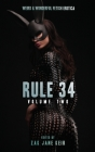 Rule 34 Volume 2 Cover Image