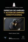 Derecho de Amparo Y Acción de Amparo Constitucional Cover Image
