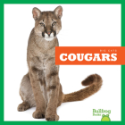 Cougars (Big Cats) Cover Image