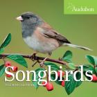 Audubon Songbirds Mini Wall Calendar 2022 Cover Image