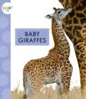 Baby Giraffes (Spot (Library)) Cover Image