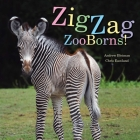 ZigZag ZooBorns!: Zoo Baby Colors and Patterns Cover Image