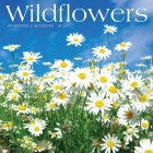 Wildflowers 2022 Wall Calendar Cover Image