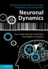 Neuronal Dynamics: From Single Neurons to Networks and Models of Cognition Cover Image