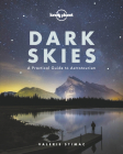Dark Skies Cover Image