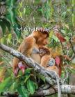 A Visual Guide to Mammals (Visual Exploration of Science) Cover Image